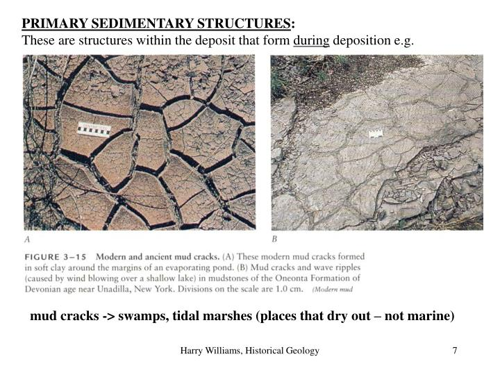 PRIMARY SEDIMENTARY STRUCTURES