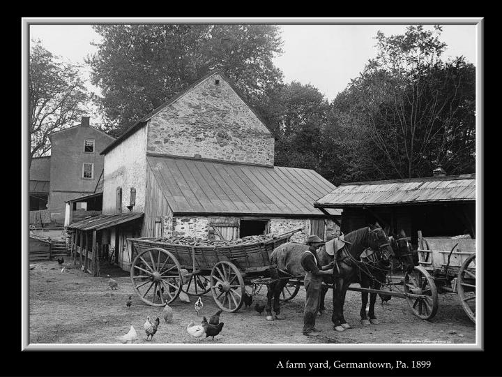 A farm yard, Germantown, Pa. 1899