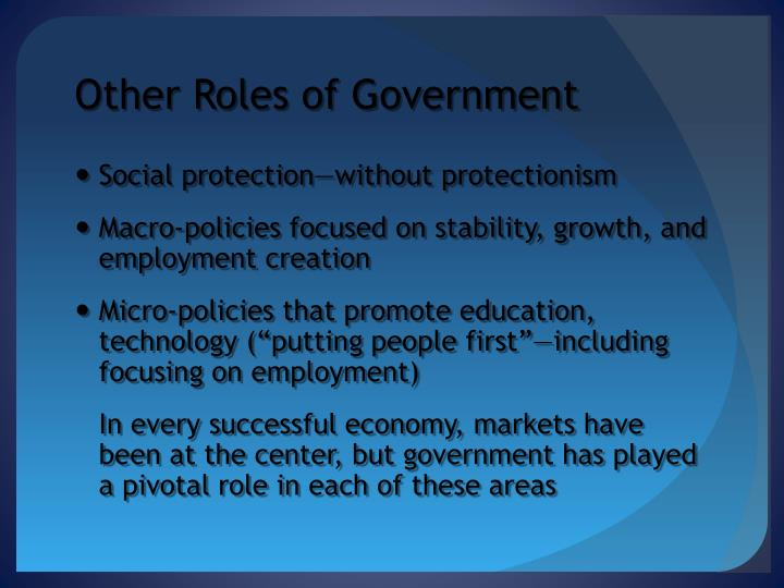 Other Roles of Government
