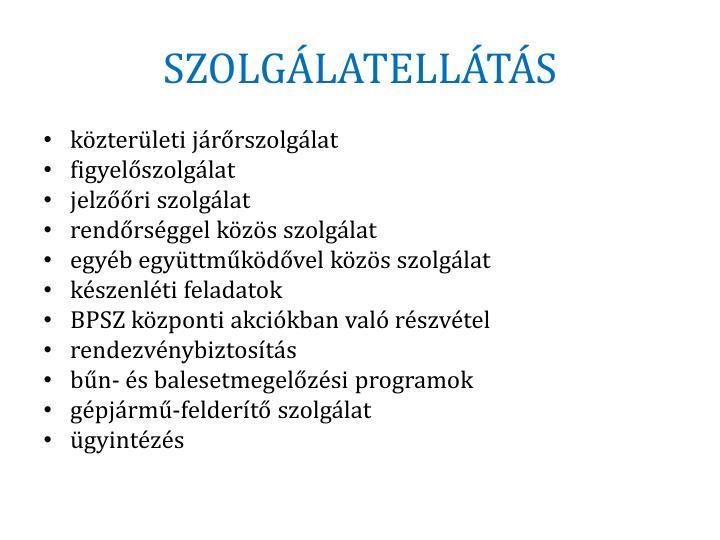 SZOLGÁLATELLÁTÁS