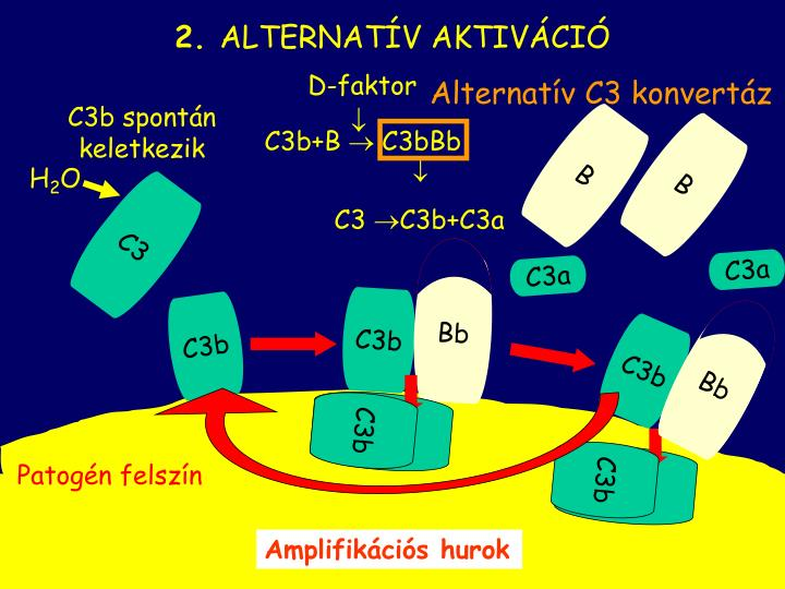 D-faktor
