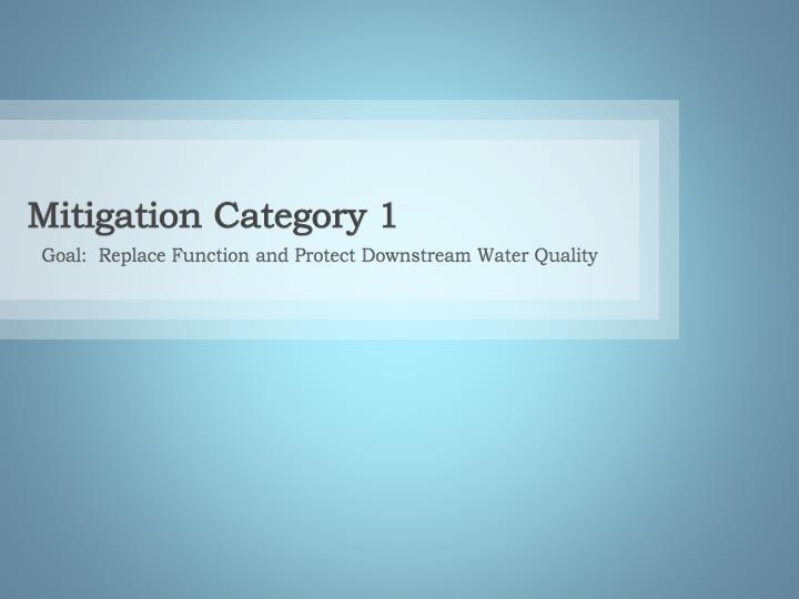 Mitigation Category 1