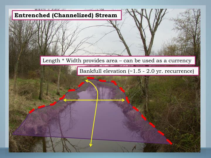 Entrenched (Channelized) Stream