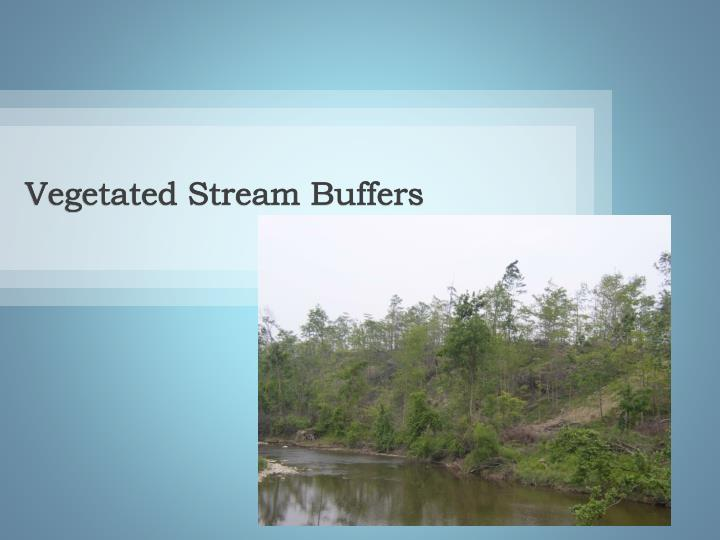 Vegetated Stream Buffers