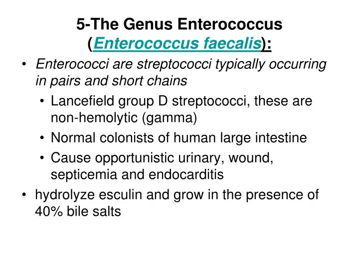 5-The Genus Enterococcus (