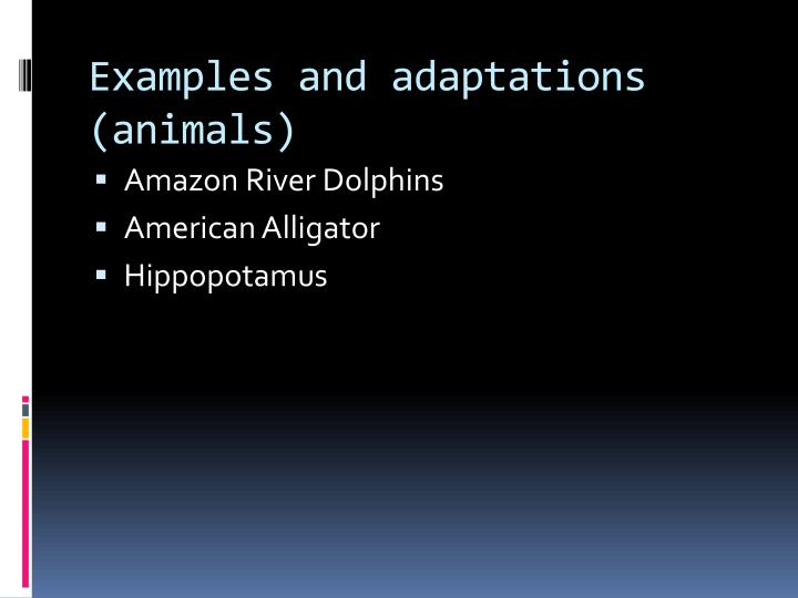 Examples and adaptations (animals)