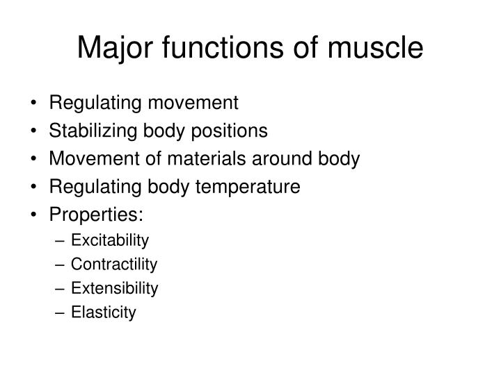 Major functions of muscle
