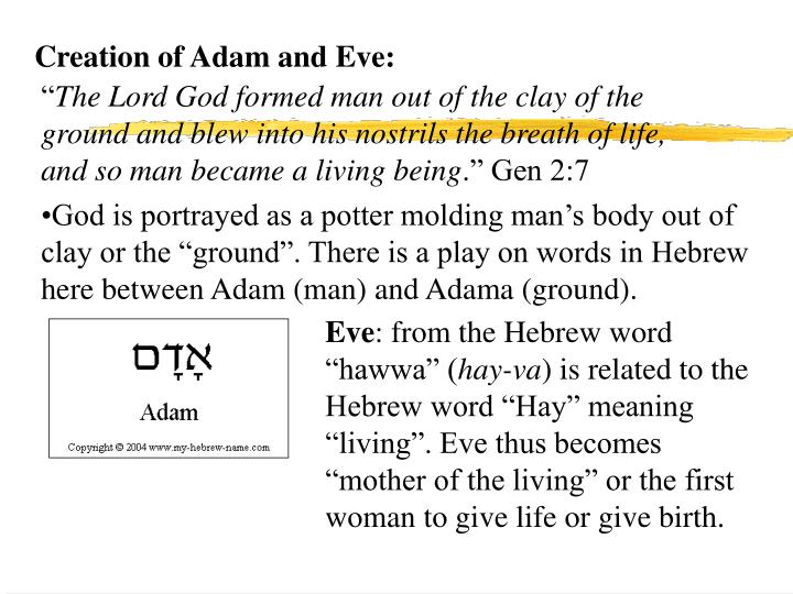 Creation of Adam and Eve:
