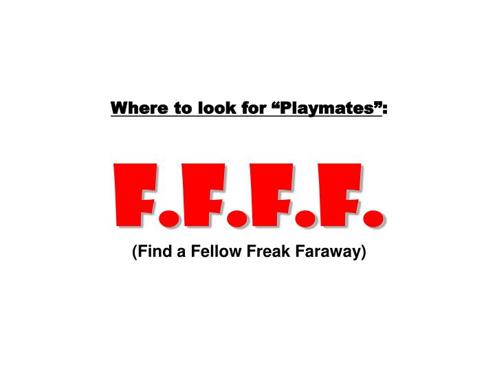 """Where to look for """"Playmates"""""""