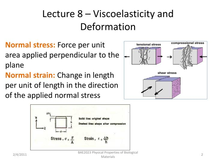 Lecture 8 viscoelasticity and deformation1