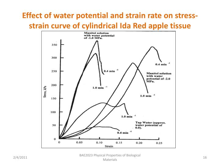 Effect of water potential and strain rate on stress-strain curve of cylindrical