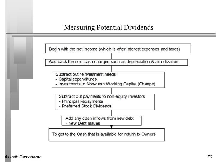 Measuring Potential Dividends