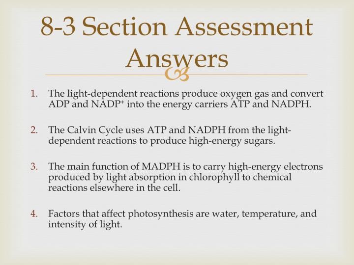 8-3 Section Assessment