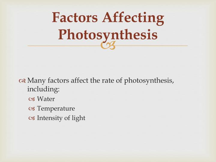 Factors Affecting Photosynthesis