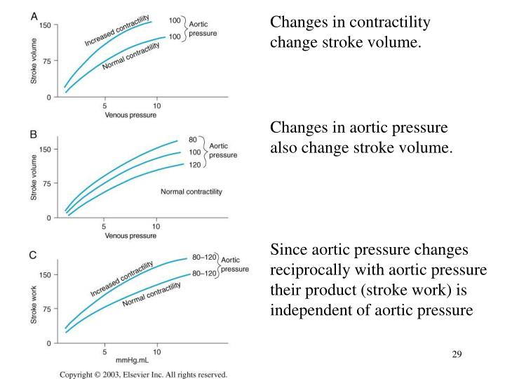 Changes in contractility change stroke volume.