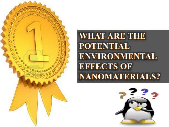 WHAT ARE THE POTENTIAL ENVIRONMENTAL EFFECTS OF NANOMATERIALS?