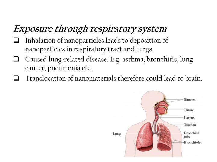 Exposure through respiratory system
