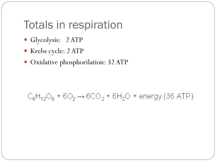 Totals in respiration