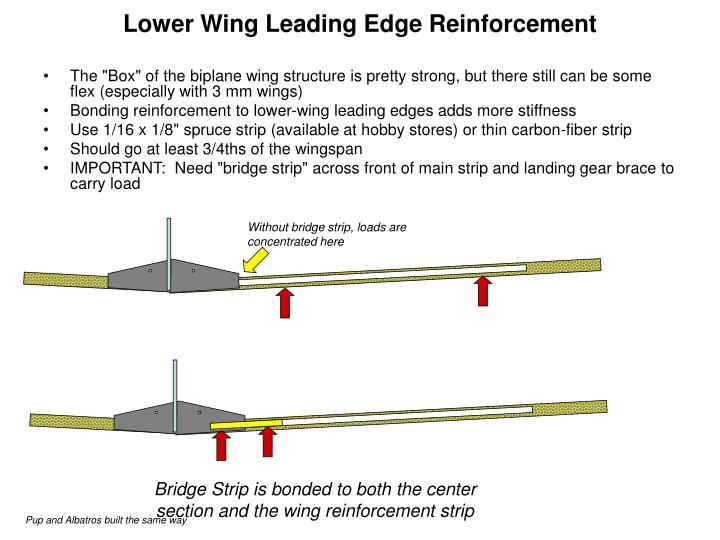 Lower Wing Leading Edge Reinforcement