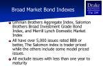 broad market bond indexes