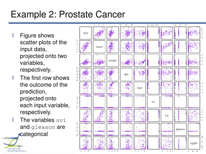 Example 2: Prostate Cancer