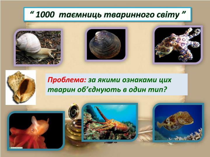 """"""" 1000  таємниць тваринного світу """""""