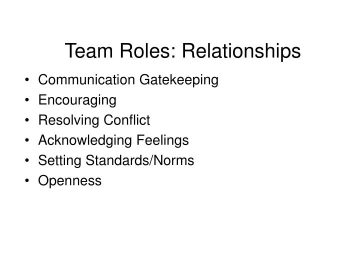 Team Roles: Relationships