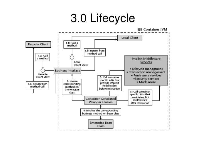 3.0 Lifecycle