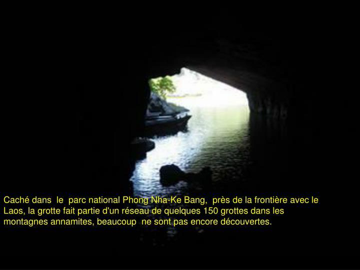 Caché dans  le  parc national Phong Nha-Ke Bang,  près de la frontière avec le Laos, la grotte fait partie d'un réseau de quelques 150 grottes dans les montagnes annamites, beaucoup  ne sont pas encore découvertes.