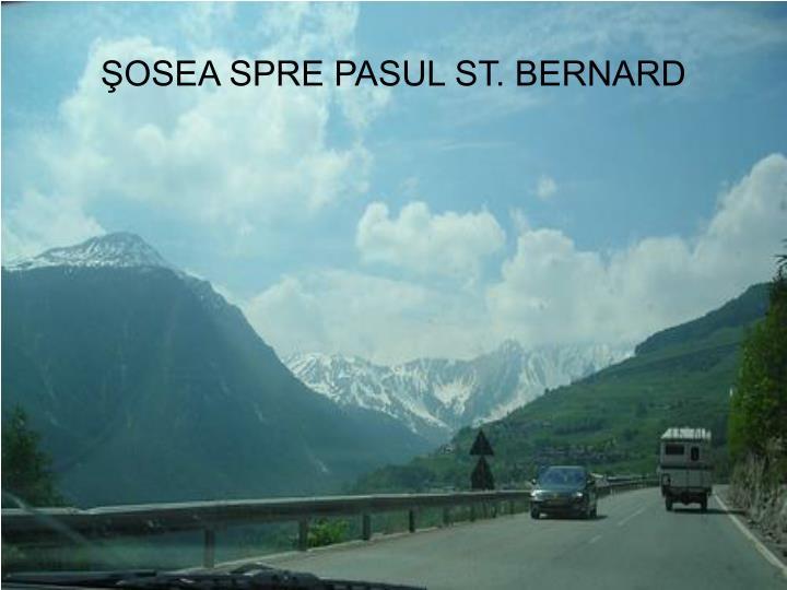 ŞOSEA SPRE PASUL ST. BERNARD