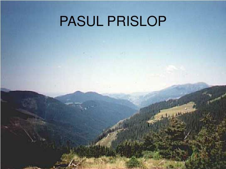 PASUL PRISLOP