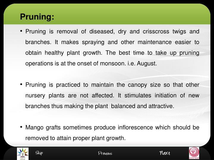 Pruning: