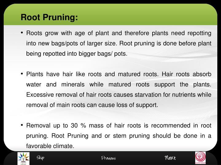 Root Pruning:
