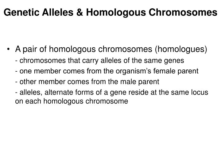 Genetic Alleles & Homologous Chromosomes