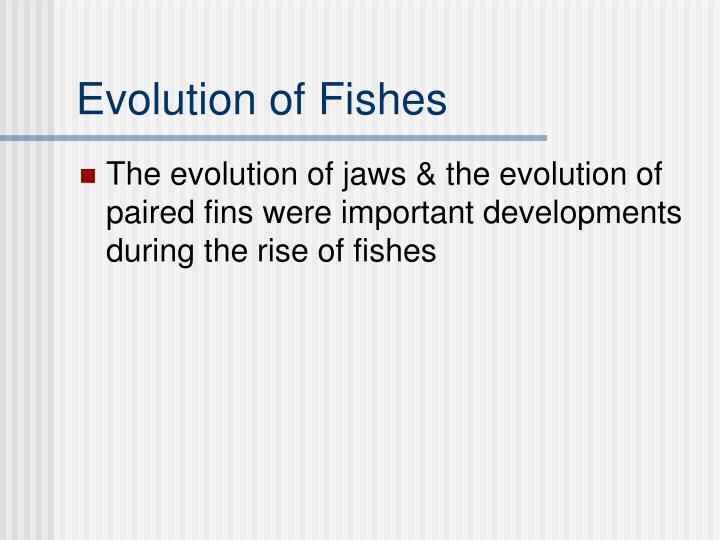 Evolution of Fishes