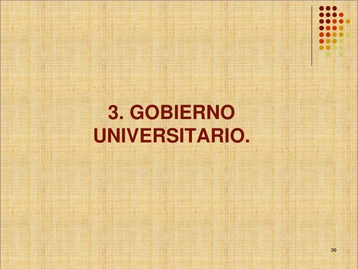 3. GOBIERNO UNIVERSITARIO.