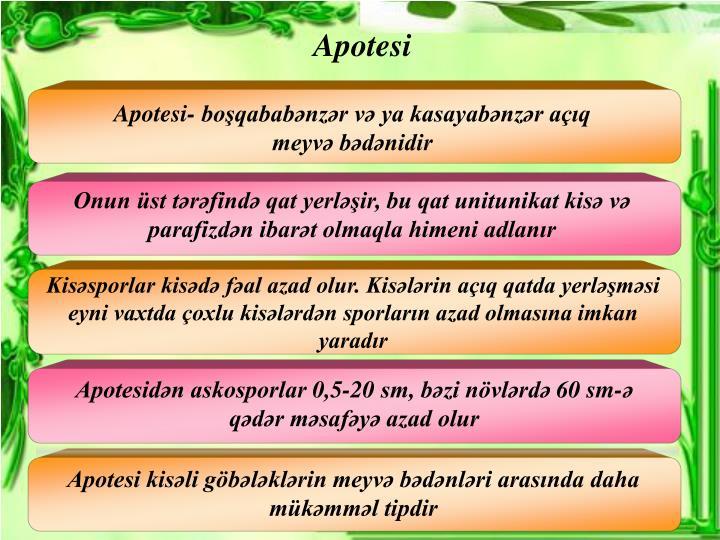 Apotesi