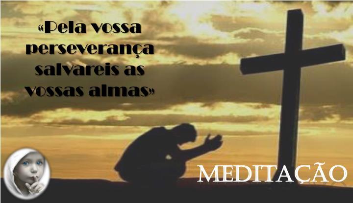 «Pela vossa perseverança salvareis as vossas almas»