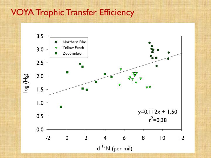 VOYA Trophic Transfer Efficiency