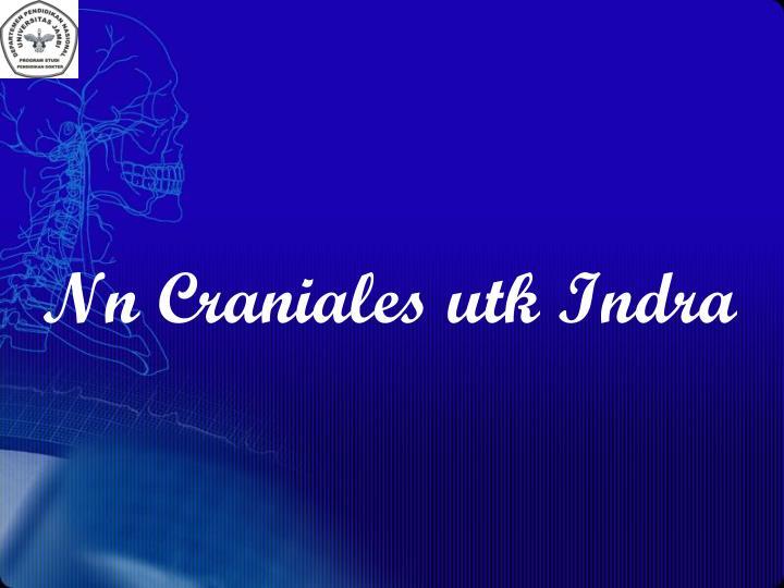 Nn Craniales utk Indra