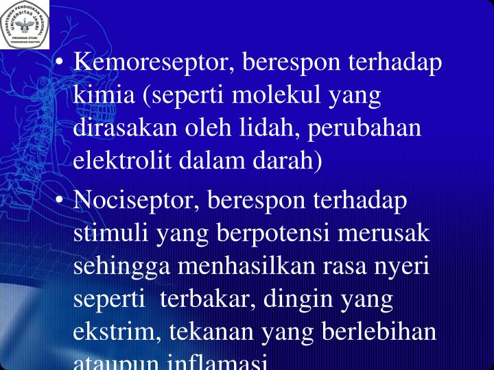 Kemoreseptor, berespon terhadap kimia (seperti molekul yang dirasakan oleh lidah, perubahan elektrolit dalam darah)