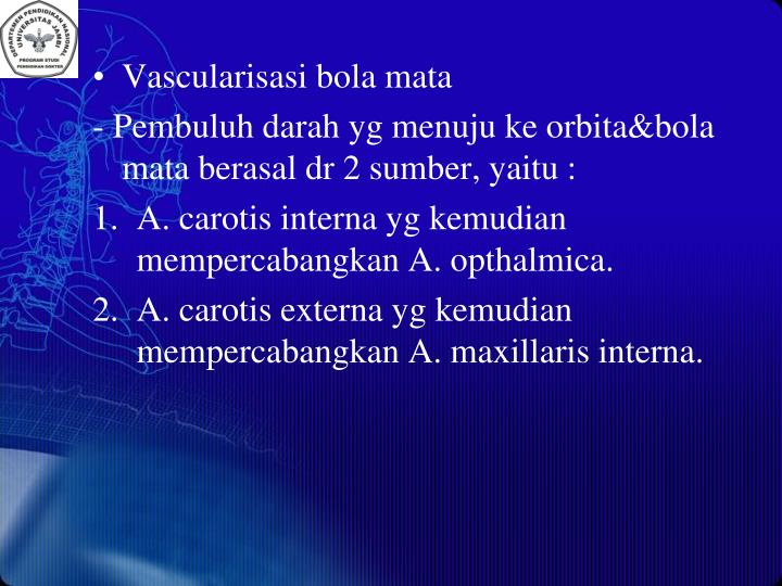 Vascularisasi