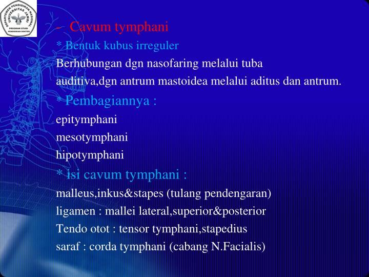 Cavum tymphani