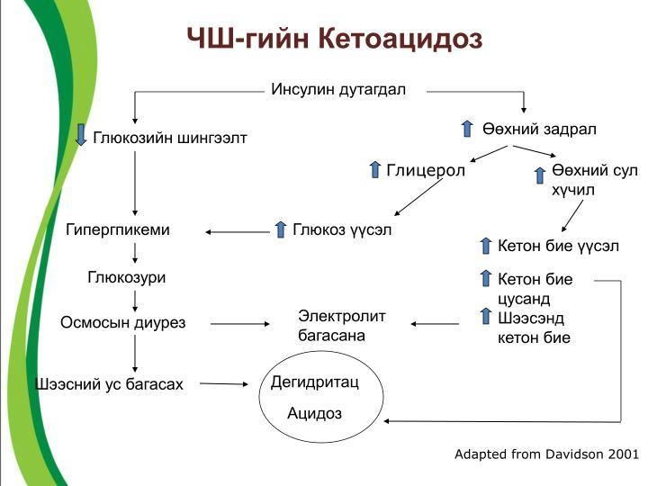 ЧШ-гийн Кетоацидоз