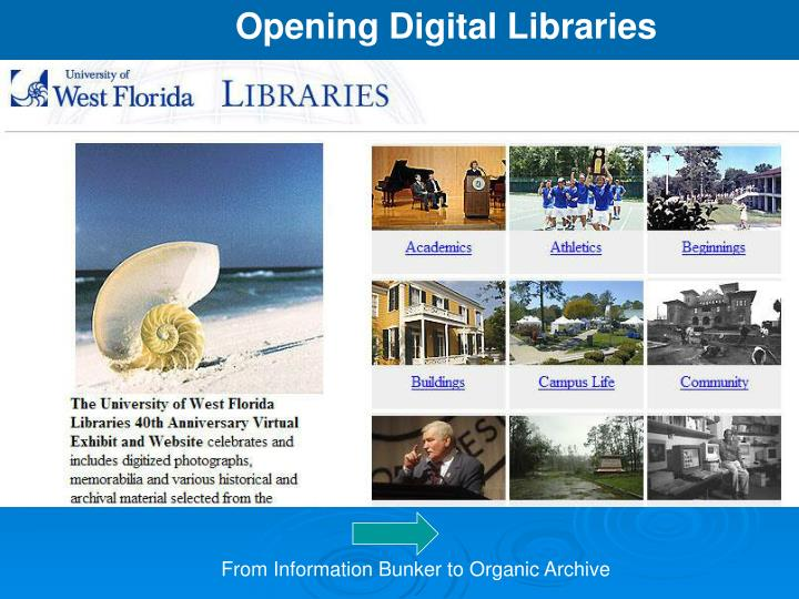Opening Digital Libraries