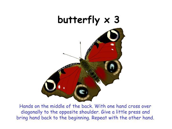 butterfly x 3