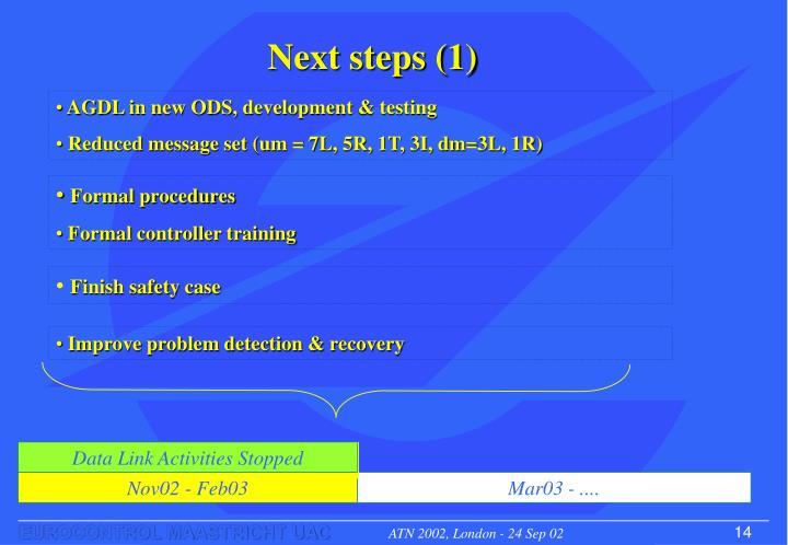 Next steps (1)