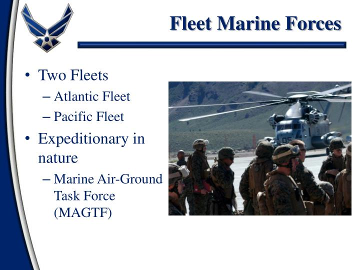 Fleet Marine Forces