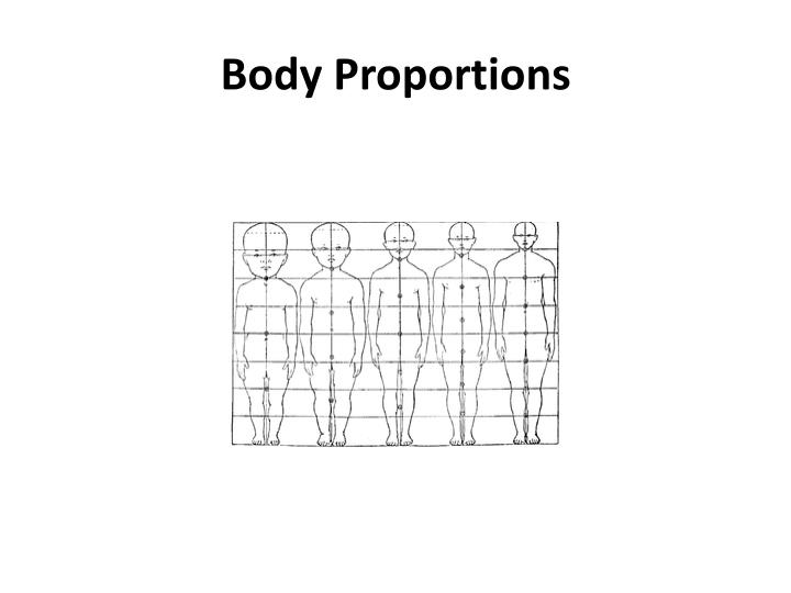 Body Proportions