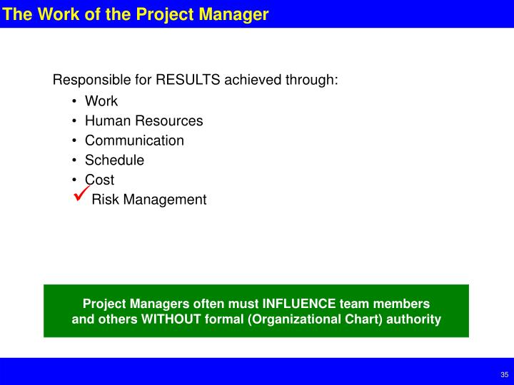 The Work of the Project Manager